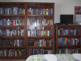 My Book Collection by RhaedaLeeMire