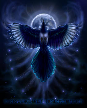 Bringer of the Night by FelisGlacialis