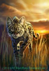 Savannah cat by FelisGlacialis