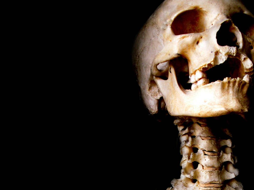 Skeleton by preacherkane