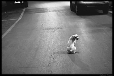 Be alone by blackandecker