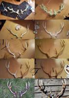 making of antlers by Fairytas
