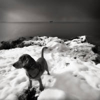 sea,snow and  .... by denis2