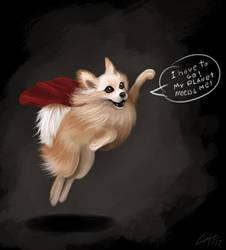 Toby superdog by Lukecfc