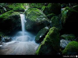 Nichols Creek 3 by shadowfoxcreative