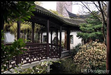 Portland Chinese Gardens XVI by davidmoakes