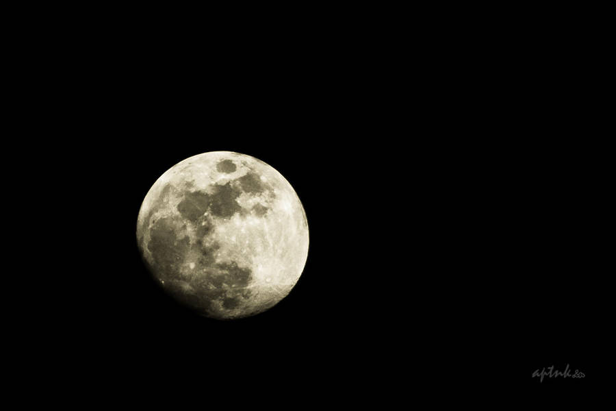Dark Moon by amiyain