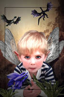 Of Fairies and Dragons by LindArtz