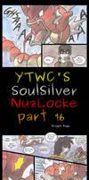 YTWC's Nuzlocke 16 by Yamashita-akaDoragon