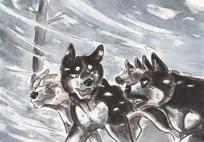 Sons of Mutsu by Yamashita-akaDoragon
