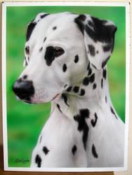 Airbrushed Dalmatian by BleedingBlack666