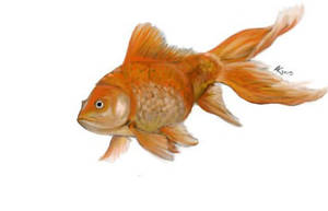 A Digital Goldfish by dragonsoul3443