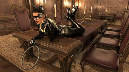 Catwoman likes to take from the rich 2 by DahriAlGhul