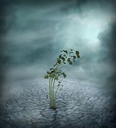 Dark plant by kawaiiunicornbitch