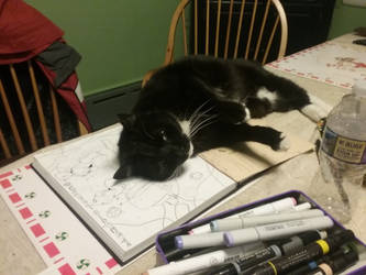 excuse me sir i am trying to draw by PastelMangos