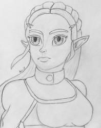 BOTW Princess Zelda by LOZRocksmysocks77