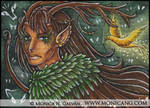 Zeik ACEO by Monica-NG
