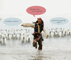 Run Sparrow, run by pierzyna