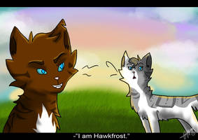 Meeting Hawkfrost .:Omen of the Stars Scene:. by liracal