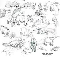 Zoo Studies by StudioPsycho