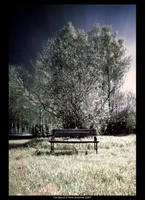 The Bench by unbearablegrey