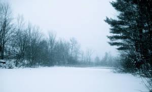 Winter Wonderland by WICKEDCLOWN957