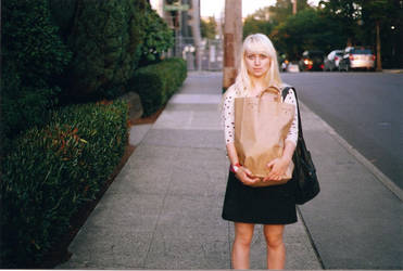 big brown bag by PrettyPineapple