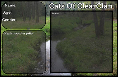 Cats Of ClearClan Application by AskHarestar