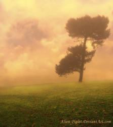 Lone Dusk by TamMebonia