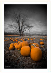 Pumpkins Past by jnati