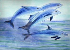 Dolphins by Deidaras-Girl