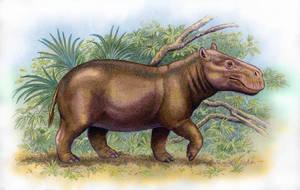 Archaeopotamus harvardi by WillemSvdMerwe
