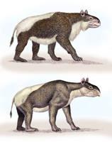 Two Homalodatheriums by WillemSvdMerwe