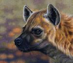 Spotted Hyena by WillemSvdMerwe