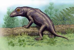 Nikkasaurus tatarinovi by WillemSvdMerwe