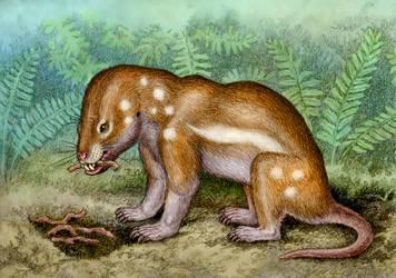Kayentatherium wellesi by WillemSvdMerwe