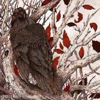 Three-Eyed Raven by AngelaRizza