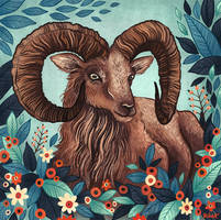 Urial by AngelaRizza