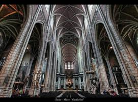 ...Saint Bavo Cathedral... by erhansasmaz
