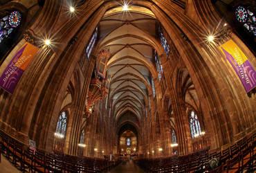 *Strasbourg Cathedral* by erhansasmaz