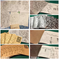 2014-2015 Current (hand-made) Art Books by dizziness