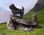 King of the Mountain by Cynnalia