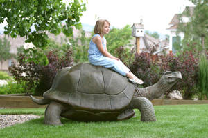 george the tortoise by RandyHand