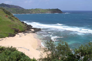 Beach view Na Aina Kai by RandyHand