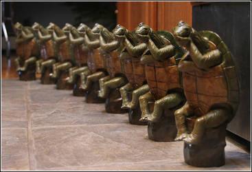 9 Skeptical Turtles by RandyHand