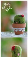 Cactus PinCushion by xXScarletButterflyXx
