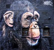 Chimpanzee, Street Art by deepgrounduk