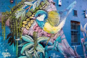Urban Wildlife by deepgrounduk