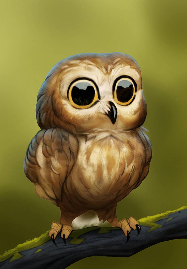 Tiny owl by Henkkab