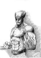 Wolverine inked sketch by MenguzzOArt